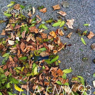 2013-02-27 - ATEQ - IA Mix 93 (Giegling).jpg
