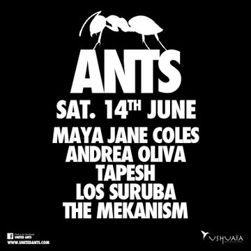 2014-06-14 - Ants Opening Party.jpg