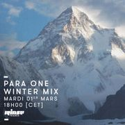 2016-03-01 - Para One - Winter Mix (Rinse FM France).jpg