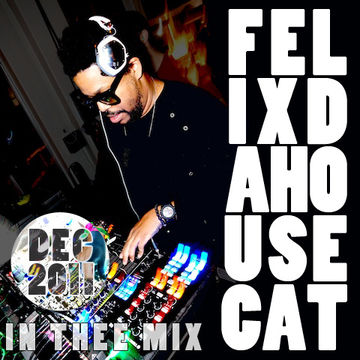 2011-12-20 - Felix Da Housecat - In Thee Mix.jpg