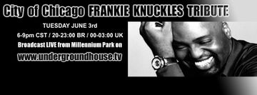 2014-06-03 - City Of Chicago Frankie Knuckles Tribute, Millenium Park.jpg