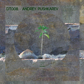 2013-03-06 - Andrey Pushkarev - Deep Thinking Podcast (DT008).jpg