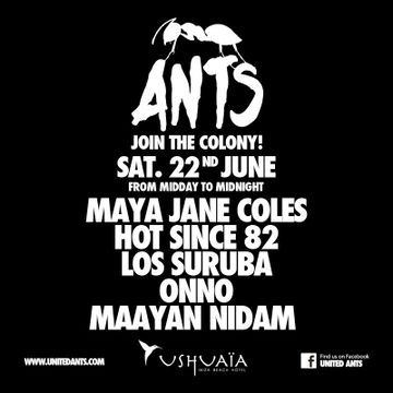 2013-06-22 - ANTS - Join The Colony!, Ushuaia.jpg