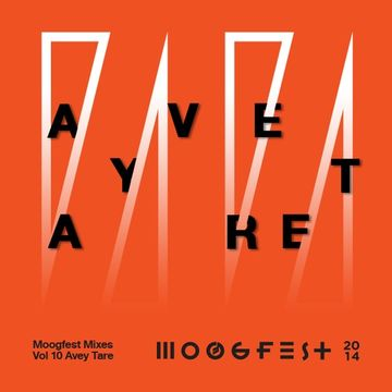 2014-03 - Avey Tare's Slasher Flicks - Moogfest Mixes Volume 10.jpg