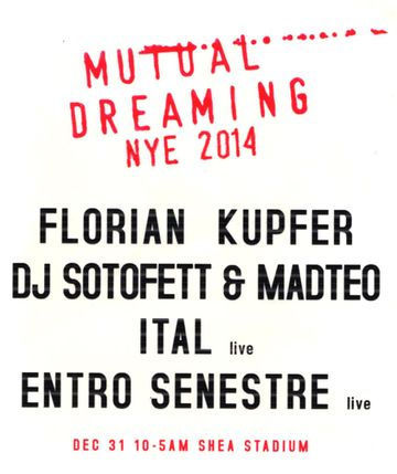 2013-12-31 - Mutual Dreaming's New Years Eve, Live @ Shea Stadium BK, NYC.jpg