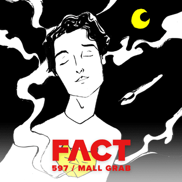 2017-04-19 - Mall Grab - FACT Mix 597.png